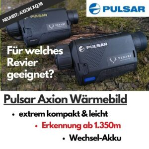 Pulsar Axion Übersicht - Thumbnail